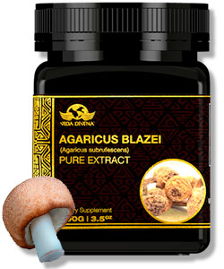 extracto de agaricus blazei