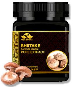 extractos vida shiitake
