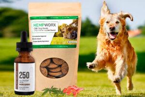productos para mascotas hempworx